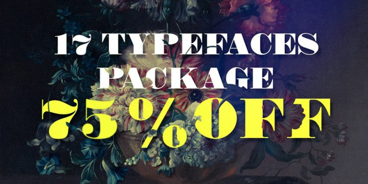17 FONTS PACKAGE 75% DISCOUNT